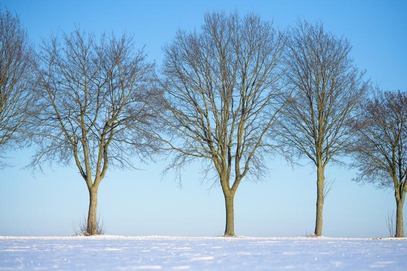 Baianowski-Fotografie-Landschaftsfotografie-0216