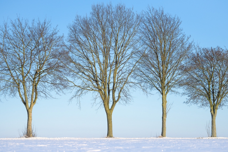 Baianowski-Fotografie-Landschaftsfotografie-0220