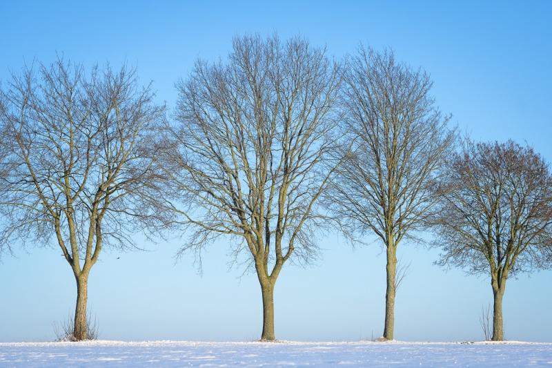 Baianowski-Fotografie-Landschaftsfotografie-0221