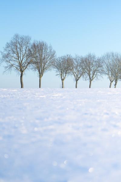 Baianowski-Fotografie-Landschaftsfotografie-0228