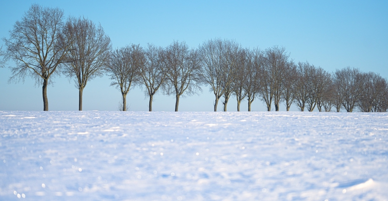 Baianowski-Fotografie-Landschaftsfotografie-0230