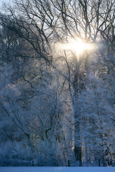 Baianowski-Fotografie-Landschaftsfotografie-0251