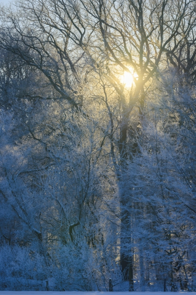 Baianowski-Fotografie-Landschaftsfotografie-0252