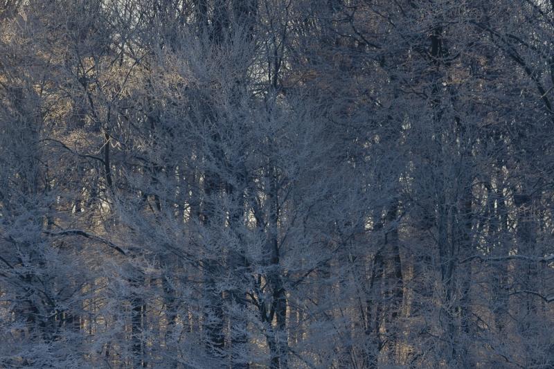 Baianowski-Fotografie-Landschaftsfotografie-0256