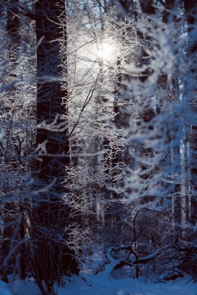 Baianowski-Fotografie-Landschaftsfotografie-0260