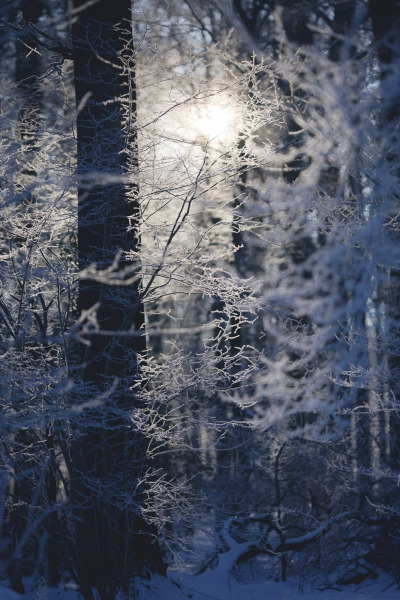 Baianowski-Fotografie-Landschaftsfotografie-0261