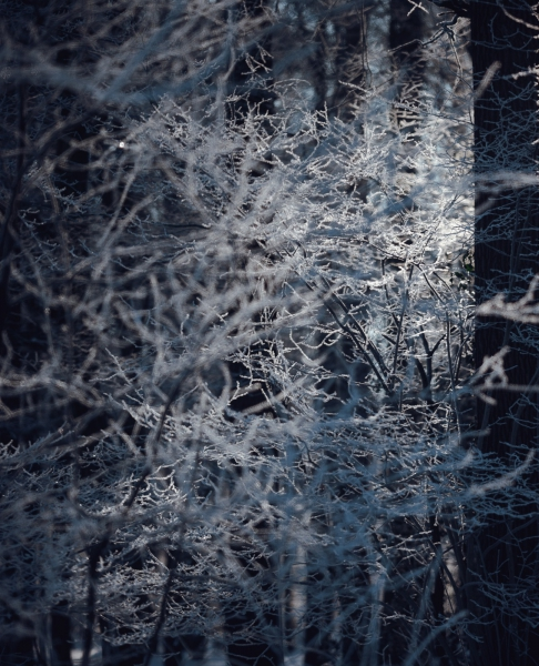 Baianowski-Fotografie-Landschaftsfotografie-0262