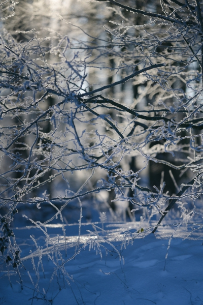 Baianowski-Fotografie-Landschaftsfotografie-0270