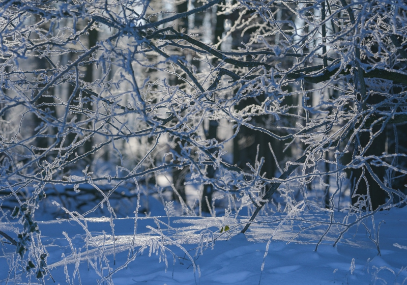 Baianowski-Fotografie-Landschaftsfotografie-0279